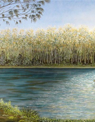 Laguna Verde.